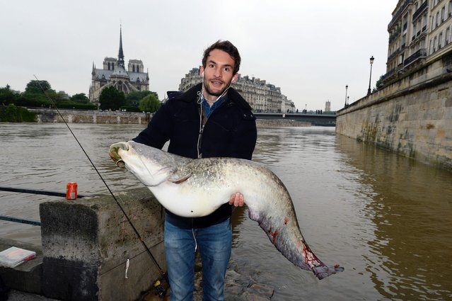 A man fishes on the flooded banks of the river Seine following heavy rainfalls in Paris on June 2, 2016. (Photo by Bertrand Guay/AFP Photo)