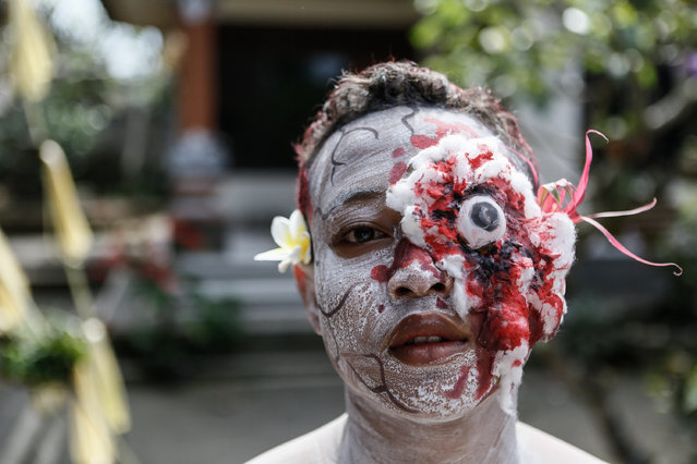A young member of  the village community with a painted face and displaying fake wound poses before the Grebeg Ritual on June 25, 2014 in Tegallalang Village, Gianyar, Bali, Indonesia. During the biannual ritual, young members of the community parade through the village with painted faces and bodies to ward off evil spirits. (Photo by Putu Sayoga/Getty Images)