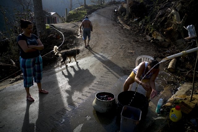A woman washes her clothes with water from the mountain while Ramon Sortre Vazquez walks with his dog, in Moravis, Puerto Rico, Sunday, October 1, 2017. Ramon suffers from diabetes and he says that he been 10 days without insulin because the lack of power has not let him keep the medicine in a cool place. (Photo by Ramon Espinosa/AP Photo)