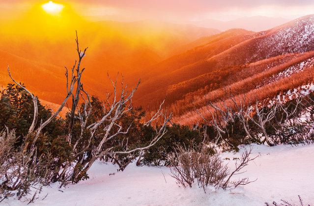 January. Sunset through fog at Mount Hotham, Victoria. (Photo by Jon Bagge/Australian Bureau of Meteorology)