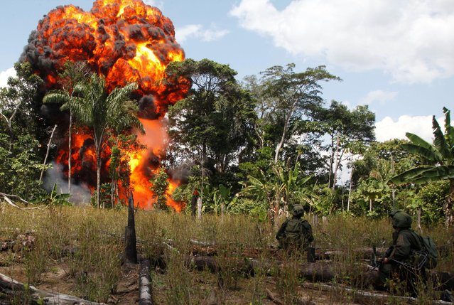 Colombian anti-drug policemen stand guard after burning a cocaine laboratory in Puerto Concordia near Meta province January 25, 2012. (Photo by John Vizcaino/Reuters)