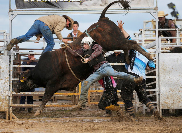 Bull rider Sam Woodall from Heywood in the Australian state of Victoria is thrown off a bull during competition at the Deni Ute Muster in Deniliquin, New South Wales, October 1, 2016. (Photo by Jason Reed/Reuters)
