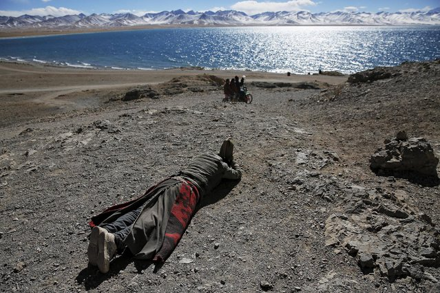 A Tibetan man prostrates himself above Namtso lake in the Tibet Autonomous Region, China November 18, 2015. Located four hours' drive from Lhasa at an altitude of around 4,718m (15, 479 ft) above sea level, Namtso lake is not only the highest saltwater lake in the world but is also considered sacred, attracting throngs of devotees and pilgrims. (Photo by Damir Sagolj/Reuters)