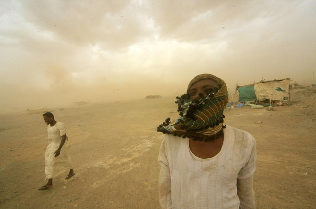 Gold mine workers walk to their shelter during a sandstorm in Al-Ibedia locality at River Nile State, July 30, 2013. (Photo by Mohamed Nureldin Abdallah/Reuters)