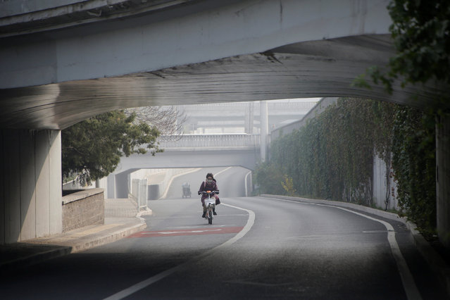 A woman wearing a mask cycles on a hazy day in Beijing, China, November 4, 2016. (Photo by Jason Lee/Reuters)