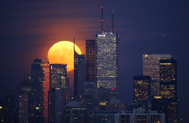 The moon rises behind the skyline and financial district in Toronto, November 25, 2015. (Photo by Mark Blinch/Reuters)