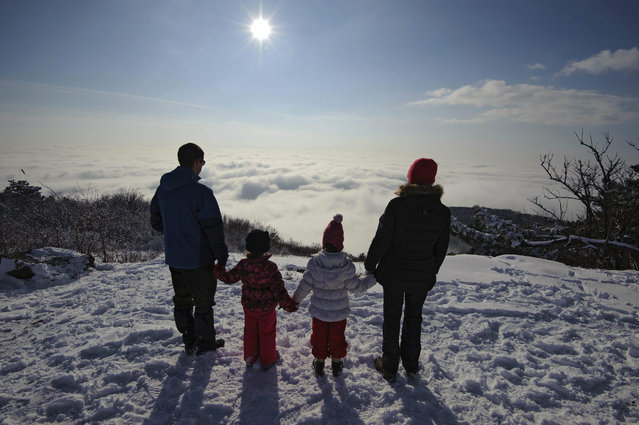 A family observes the thick cloud which blankets the country's prominent wine-growing region, Tokaj, as it is seen from the top of Mountain Nagykopasz, Hungary, 16 January 2016. (Photo by Zsolt Czegledi/EPA)