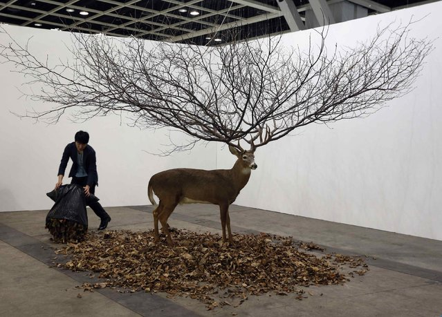 A worker places leaves around an installation by South Korean artist MyeongBeom Kim at Art Basel's 2015 edition in Hong Kong March 13, 2015. The Hong Kong show of Art Basel features 233 galleries from 37 countries and territories, presenting works ranging from the Modern period of the early 20th century to the most contemporary artists of today, according to the official press release. (Photo by Bobby Yip/Reuters)