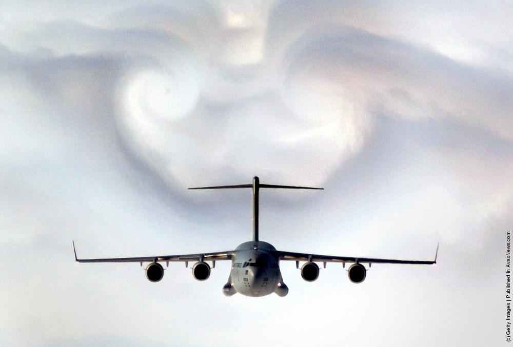 Beauty Of Flight