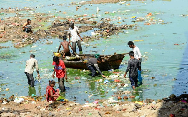 Indian workers collect and remove trash with a boat as they take part in the cleaning of the Sabarmati river in Ahmedabad on May 21, 2019. In order to repair gates of the Vasna Dam and clean the Sabarmati river, some portions of it have been dried and tons of daily trash have been removed. (Photo by Sam Panthaky/AFP Photo)