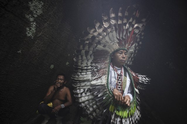 A spiritual leader (R) of the Huni Kui Indian tribe performs a ceremony for a sacred samauma (silk-cotton) tree outside the village of Novo Segredo along the Envira river in Brazil's northwestern Acre state, March 9, 2014. (Photo by Lunae Parracho/Reuters)