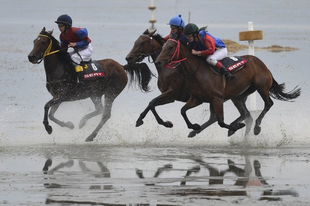 Jockeys ride horses on mud flats during their tideland race (Wadden Race) in Duhnen, Lower Saxony, Germany, July 12, 2015. (Photo by Fabian Bimmer/Reuters)