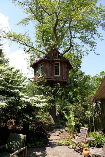 The French Gardener's House, Annapolis, Maryland. A maple in the owner's backyard gave the landscape architect the idea to rise above his manicured yard for a better view. (Photo by Pete Nelson)