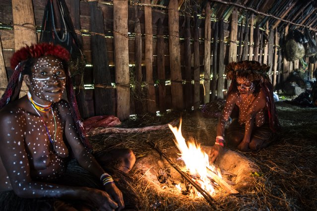 A woman from the Dani burns sweet potatoes at Obia Village on August 9, 2014 in Wamena, Papua, Indonesia. (Photo by Agung Parameswara/Getty Images)