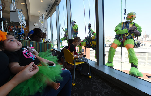 The Teenage Mutant Ninja Turtles made an appearance at Children's of Alabama to wash the windows at the Benjamin Russell Building and bring smiles to the young patients Wednesday September 17, 2014. They scaled down the 15 story hospital building stopping at every floor to see the kids. The superheroes work for Squeegee Cleaning Services of Chelsea. Over 200 patients watched the show. Grady Acevedo Rosas, 4, high fives one of the Ninja Turtles through the glass. (Photo by Joe Songer/AP Photo/The Montgomery Advertiser)