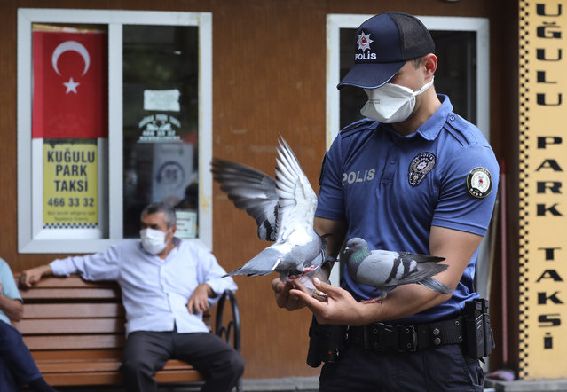 A Turkish police officer wearing a face mask to protect against the spread of coronavirus, feeds pigeons in Kugulu Park public garden, in Ankara, Turkey, Saturday, June 20, 2020. Turkish authorities have made the wearing of masks mandatory in three major cities to curb the spread of COVID-19 following an uptick in confirmed cases since the reopening of many businesses. (Photo by Burhan Ozbilici/AP Photo)