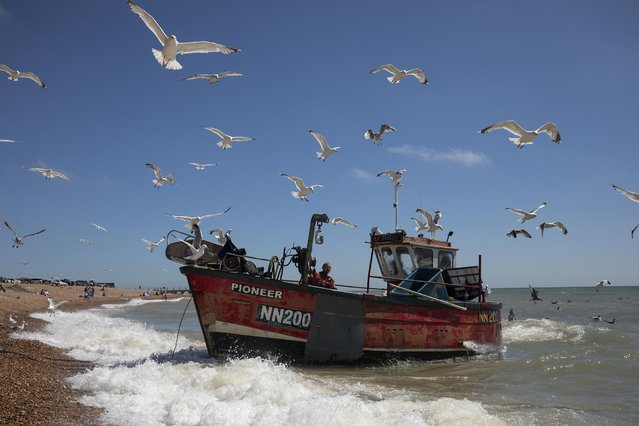 A fishing boat returns from an overnight catch on August 5, 2020 in Hastings, United Kingdom. Warm weather has returned to parts of the UK with temperatures forecast to rise towards the end of the week and the weekend. (Photo by Dan Kitwood/Getty Images)