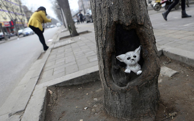 "An image of a Fennec fox painted on a tree hole by Wang Yue is seen in Shijiazhuang, on March 13, 2013. Wang Yue, a senior at Dalian Industry University, uses her paintbrush to turn ugly tree holes into lovely views in Shijiazhuang, capital city of Hebei Province, China. Wang and her companions call the tree-hole paintings ""meitu"", which means ""beautiful journey"". The paintings on the trees have brightened the city during the dull, grey winter. (Photo by Pillar Lee/Reuters)"
