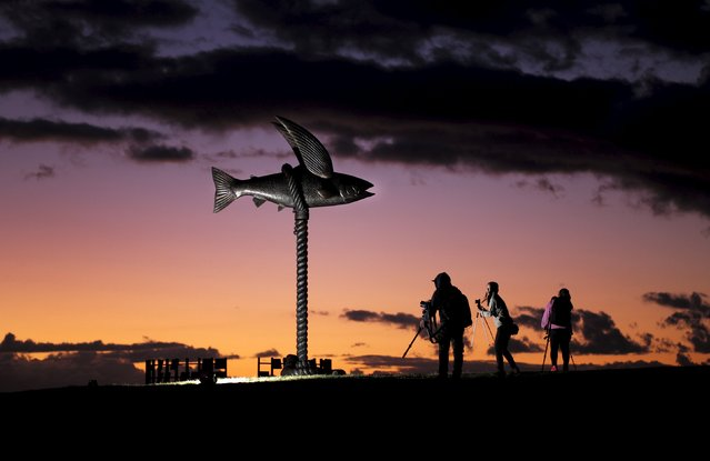 "A giant fiberglass and steel sculpture titled ""Flying Fish"" by Australian artists Gillie and Marc Shattner dwarfs visitors before sunrise at the 19th annual Sculpture by the Sea exhibition in Sydney, Australia October 24, 2015. (Photo by Jason Reed/Reuters)"