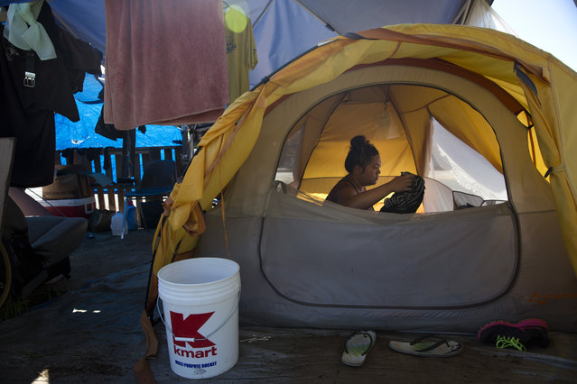 In this Wednesday, August 26, 2015 photo, Deja-Lynn Rombawa-Quarles, a 24-year-old woman who works part time at an elementary school as a group leader, sits in her tent at a homeless encampment in the Kakaako district of Honolulu. Rombawa-Quarles is one of a growing number of working poor in Honolulu who, through a combination of high housing costs, a dearth of affordable housing and bad circumstances, wound up living on the street. (Photo by Jae C. Hong/AP Photo)