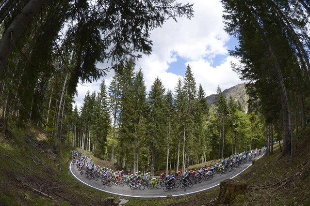 The pack pedals during the 11th stage of the Giro d'Italia, Tour of Italy cycling race, from Tarvisio to Vajont, Wednesday, May 15, 2013. (Photo by Fabio Ferrari/AP Photo)