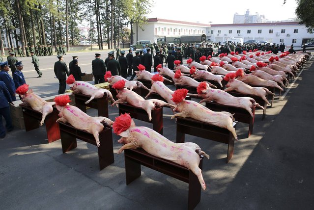 People's Liberation Army (PLA) soldiers and paramilitary policemen stand next to slaughtered pigs which are part of the goods donated by the local government to celebrate the upcoming Spring Festival, in Liangshan Yi Autonomous Prefecture, Sichuan province February 8, 2015. (Photo by Reuters/Stringer)