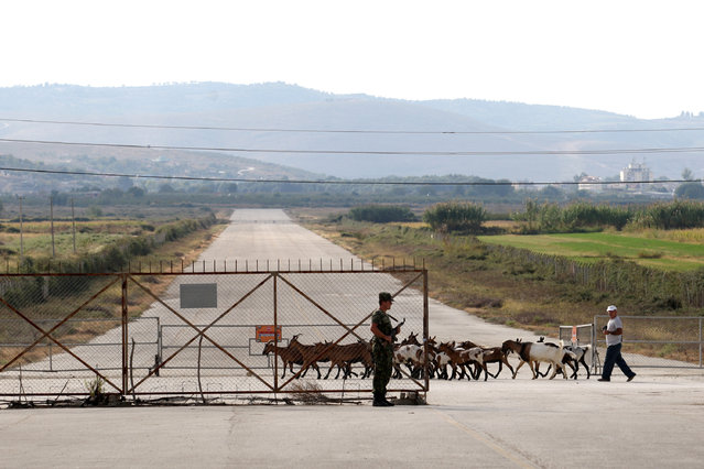 A shepherd and sheep are pictured in Kucova Air Base in Kucova, Albania on October 3, 2018. Sheep graze in the bushes between the taxiing lanes and the runway. Some 88 MiGs squat on their flat tires near three underground hangars, while birds sing around them. (Photo by Florion Goga/Reuters)