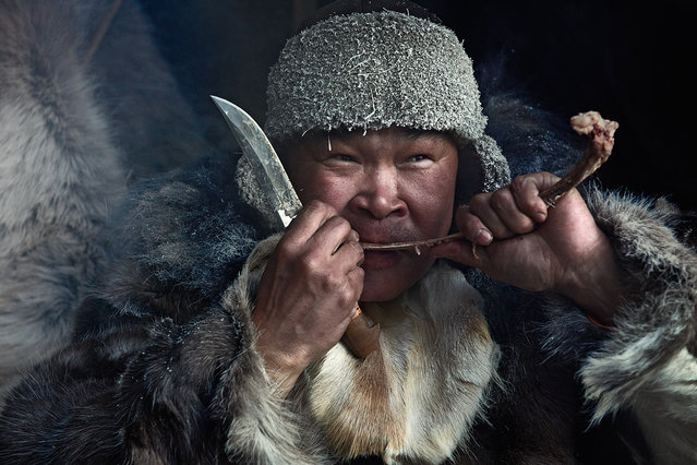 The staple foods eaten by the inland Chukchi are products of reindeer farming: boiled venison, reindeer brains and bone marrow, and reindeerblood soup. One traditional dish, rilkeil, is made from semi-digested moss from a slaughtered reindeer's stomach mixed with blood, fat, and pieces of boiled reindeer intestine. Coastal Chukchi cuisine is based on boiled walrus, seal, whale meat/fat and seaweed. Both groups eat frozen fish and edible leaves and roots. Traditional Chukchi cuisine is now supplemented with canned vegetables and other foodstuffs purchased in stores. (Jimmy Nelson)