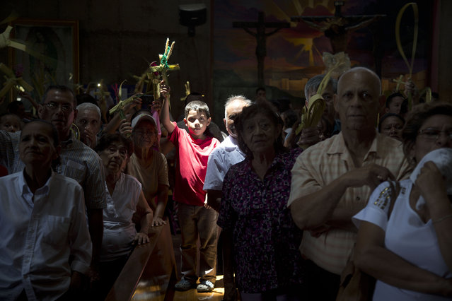 A boy holding up palm fronds shaped into a cross, is illuminated by a skylight, during a Palm Sunday celebration inside the Metropolitan Cathedral in Managua, Nicaragua, Sunday, March 29, 2015. (Photo by Esteban Felix/AP Photo)