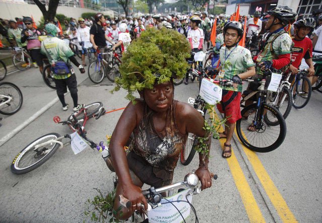 A woman wearing leaves as a costume rides her bike during the 15th tour of the fireflies in Pasig city, metro Manila November 24, 2013. This year's tour aims to raise funds in benefit to the victims of super typhoon Haiyan, locally name Yolanda. The annual tour of the fireflies advocates clean air and healthy living by promoting bicycle as main mode of transportation. (Photo by Romeo Ranoco/Reuters)