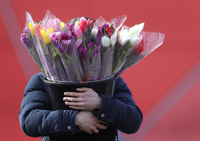A man carries a bucket with bouquets of tulips at a street market on the eve of the International Women's Day in Minsk, Belarus, Thursday, March 7, 2019. International Women's Day on March 8 is an official holiday in Belarus, where men traditionally give flowers and gifts to female relatives, friends and colleagues. (Photo by Sergei Grits/AP Photo)