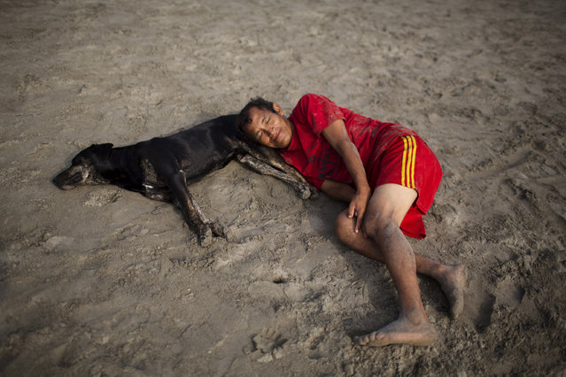 In this April 25, 2015 photo, a man and dog rest on Fishermen's Beach before a therapeutic swimming session in Lima, Peru. Along Lima's coast, people seek relief from the ailments doctors have been unable to cure. (Photo by Rodrigo Abd/AP Photo)