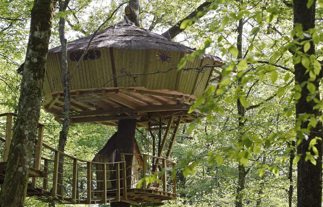 A general view of a treehouse in Le Pian Medoc, southwestern France, April 24, 2009. (Photo by Regis Duvignau/Reuters)