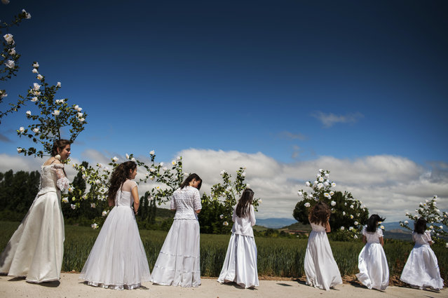 """Teenagers dressed in bridal white surrounded by flowers, take part in the pilgrimage """"The Hundred Maidens"""", in Sorzano, northern Spain, Sunday May 17, 2015. According to ancient traditions, the pilgrimage """"The Hundred Maidens"""" is in honor of the spring season and the fertility of women, today is also in honor of the Virgin Mary. (Photo by Alvaro Barrientos/AP Photo)"""