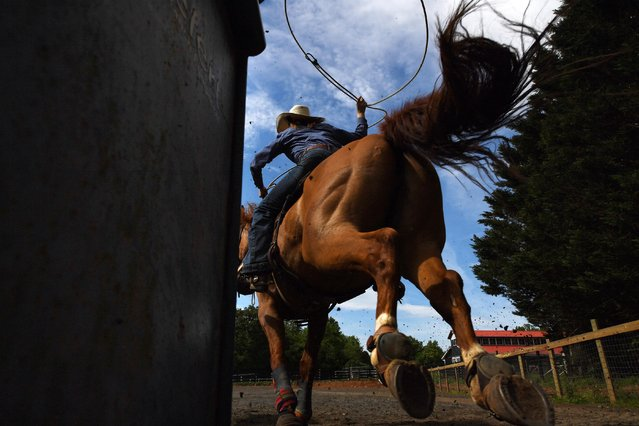 Fallon Goemmer, 18, works on her roping skills as she practices for a rodeo in Amissville, Va. on May 23, 2019. (Photo by  Matt McClain/The Washington Post)