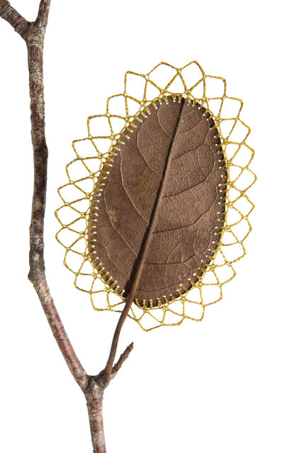 Crocheted Leaf Art By Susanna Bauer