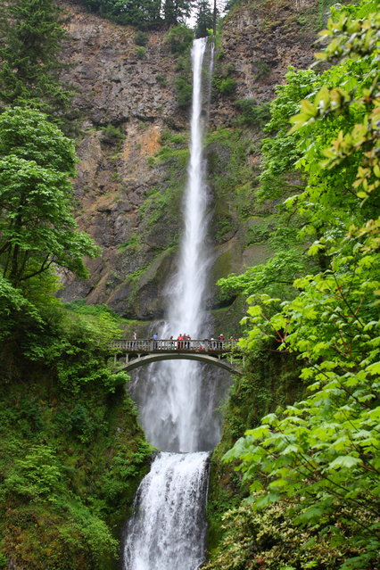 """Multnomah Falls"". This was taken on a trip to Oregon to photography waterfalls and lighthouses. Photo location:  Oregon. (Photo and caption by Marshall Clawson/National Geographic Photo Contest)"