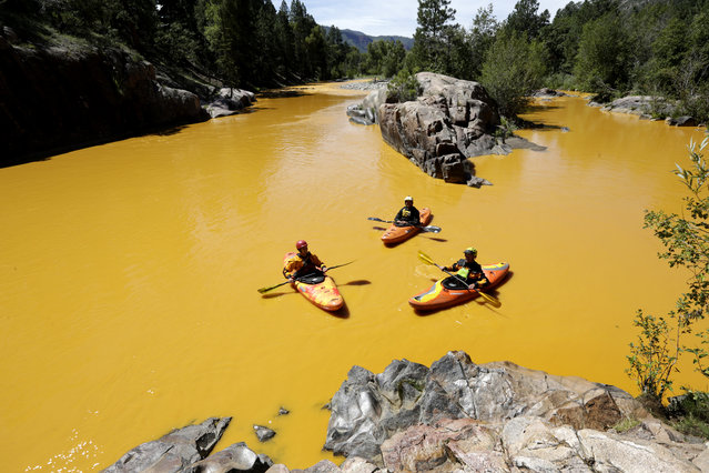 People kayak in the Animas River near Durango, Colo., Thursday, August 6, 2015, in water colored from a mine waste spill. The U.S. Environmental Protection Agency said that a cleanup team was working with heavy equipment Wednesday to secure an entrance to the Gold King Mine. Workers instead released an estimated 1 million gallons of mine waste into Cement Creek, which flows into the Animas River. (Photo by Jerry McBride/The Durango Herald via AP Photo)