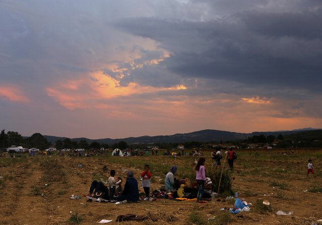 Refugees camp on a field at the Greek-Macedonian border, near the village of Idomeni, August 21, 2015. (Photo by Yannis Behrakis/Reuters)