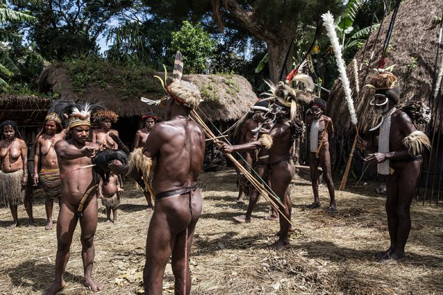 A man from the Dani kills a pig with bow and arrow at Obia Village on August 9, 2014 in Wamena, Papua, Indonesia. (Photo by Agung Parameswara/Getty Images)