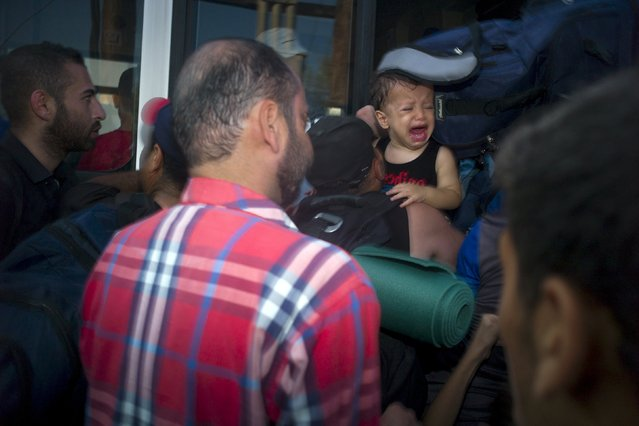 A baby cries as migrants line up for a registration procedure at the port of Mytilene on the Greek island of Lesbos, September 3, 2015. (Photo by Dimitris Michalakis/Reuters)