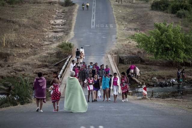 South African maidens wrap themselves in blankets as they head to a ritual bath in a local river on September 5, 2014 at the Enyokeni Royal Palace in the KwaZulu-Natal region ahead of the thirtieth anniversary of the reed dance celebrated by the Zulu King Goodwill Zwelithin. (Photo by Marco Longari/AFP Photo)