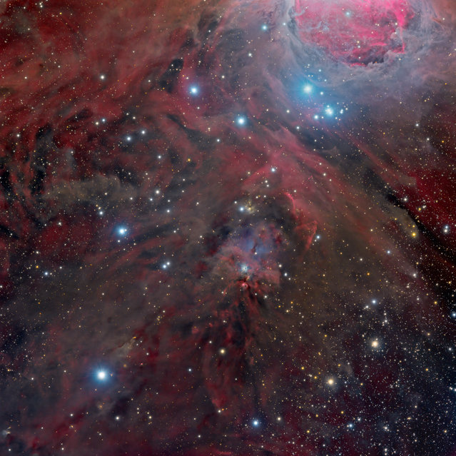 """At the feet of Orion"". This image focuses on NGC 1999, below Orion's belt. Deep Space category, Highly commended. (Photo by Marco Lorenzi, China/The Astronomy Photographer of the Year 2014 Contest)"