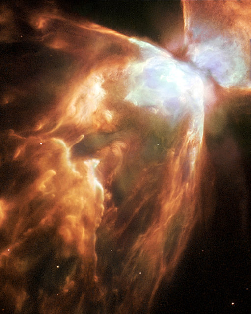 An image of the Bug Nebula shows impressive walls of compressed gas, laced with trailing strands and bubbling outflows. A dark, dusty torus surrounds the inner nebula (seen at the upper right). At the heart of the turmoil is one of the hottest stars known. (Photo by Albert Zijlstra/Reuters/NASA/ESA/Hubble Heritage Team)
