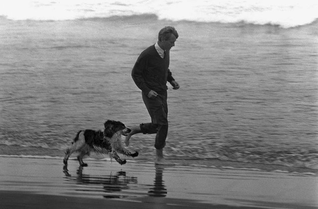 Democratic Sen. Robert F. Kennedy of New York runs through the surf with his dog, Freckles, during a stop in Astoria, Ore., May 24, 1968, during his  campaign for the presidential nomination. Kennedy  was shot and killed by Sirhan Sirhan shortly after a California primary election victory speech on June 5, 1968, at the Los Angeles Ambassador Hotel. Bobby Kennedy served as campaign manager for his brother John F. Kennedy's successful presidential bid, and was later appointed by President Kennedy as U.S. Attorney General. (Photo by Barry Sweet/AP Photo)