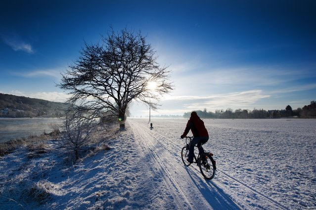 A cyclist rides on a snow-covered cycling path along the banks of the Elbe river in Dresden, Germany, 06 February 2013. Snowfalls in the evening hours of the previous day had covered many regions in Germany with a fresh white coating. (Photo by Arno Burgi/EPA)