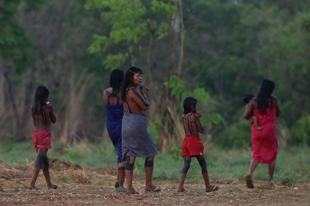 An indigenous family walks on the banks of the Taguarussu River in Palmas, Brazil, Wednesday, October 21, 2015. Palmas is the host city for the first World Indigenous Games that will showcase traditional sports with the participation of more than 2,000 indigenous athletes from around the world. The event begins Oct. 23 and runs through Nov. 1. (Photo by Eraldo Peres/AP Photo)