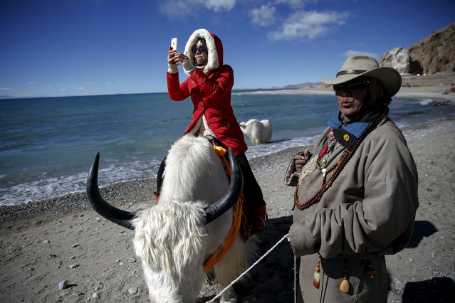 A tourist takes pictures while riding a yak held by a Tibetan man at Namtso lake in the Tibet Autonomous Region, China November 18, 2015. (Photo by Damir Sagolj/Reuters)