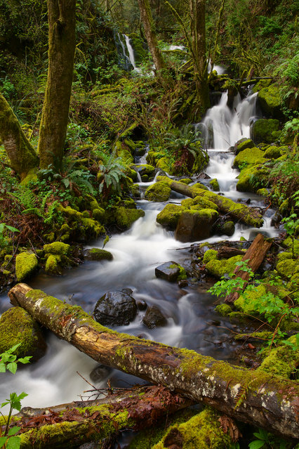 """Spring Cascade"". Cascade Mountains Spring Thaw to the Columbia River. Location: Outside Longview, Washington along the Washington / Oregon Border. (Photo and caption by Gary Migues/National Geographic Traveler Photo Contest)"