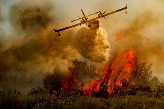 Dramatic: Sweeping low over the flames, the pictures resemble a modern version of an Italian masterpiece painting. (Photo by Antonio Grambone/Caters News Agency Ltd)